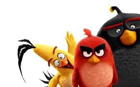 Picture Red, game, birds, film, pose, friends, animated, angry, Angry Birds, animated movie, Bomb, Chuck, AB