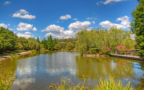 Picture greens, the sky, grass, the sun, clouds, trees, flowers, pond, Park, Australia, the bridge, island, …