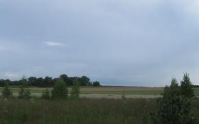 Picture field, summer, landscape