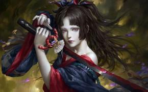 Picture look, girl, sword, Onmyoji