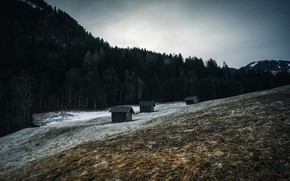 Picture forest, mountain, houses