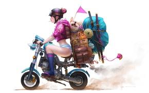 Picture girl, weapons, things, dog, katana, anime, art, glasses, motorcycle, helmet, suitcase, knee, portfolio, Akita inu, …