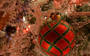 Picture macro, branches, toys, ball, ball, icicle