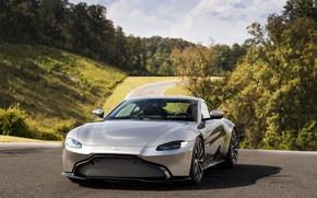 Picture forest, the sky, asphalt, Aston Martin, vegetation, coupe, Vantage, 2018, V8, 510 HP, two-door