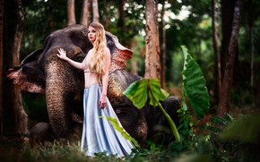 Picture greens, forest, leaves, girl, trees, nature, elephant, jungle, blonde, bokeh
