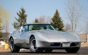 Picture Corvette, Chevrolet, 1976, C3, Greenwood