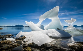 Picture coast, Alaska, ice, Alaska, Leconte Glacier
