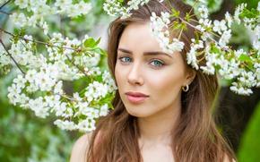 Picture eyes, look, girl, flowers, portrait, spring, garden