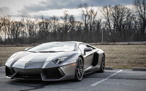Picture lamborghini, parking, aventador, gray