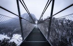 Picture winter, bridge, fog