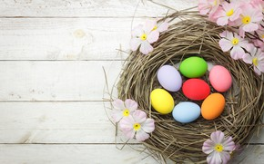 Picture flowers, basket, eggs, spring, colorful, Easter, pink, wood, pink, blossom, flowers, spring, Easter, eggs, decoration, …