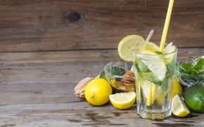 Picture lemon, tube, mint, lemonade