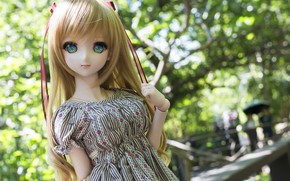 Picture girl, hair, doll