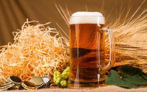 Picture foam, beer, mug, tube, ears, hops