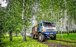 Picture Grass, Trees, Sport, Speed, Race, Master, Dirt, Birch, Russia, Kamaz, Rally, Rally, KAMAZ, 312, Master, …