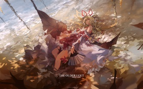 Picture leaves, fan, lies, bow, cap, touhou, art, Touhou Project, Project East, Miv4t, Strikingly Is Wait
