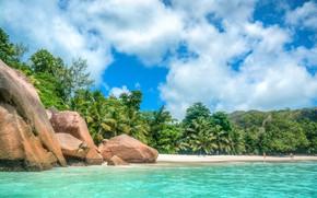 Picture sand, sea, beach, summer, tropics, stones