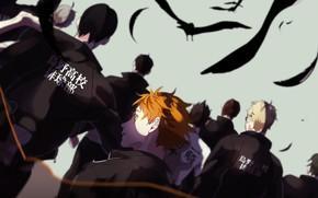 Picture team, guys, Volleyball, Haikyuu!!, Karasuma