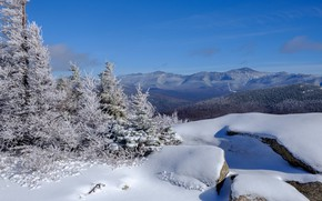 Picture winter, forest, snow, landscape, mountains, panorama