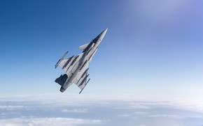 Picture You can, multi-role fighter, JAS 39D