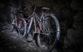 Picture background, cellar, bikes