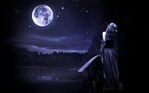 Picture forest, the sky, stars, night, bridge, the moon, Girl, pond