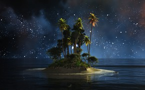 Picture water, night, palm trees, island