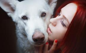 Picture look, face, face, mood, dog, Alexander Drobkov-Light, Maria Nekrasova
