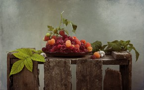Picture leaves, berries, raspberry, bowl