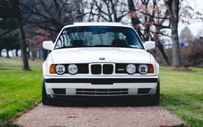 Picture BMW, White, E34