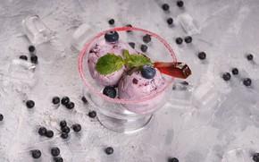 Picture blueberries, ice cream, mint, dessert, delicious