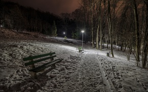 Picture winter, night, Park, bench