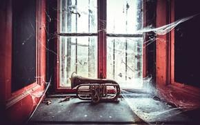 Picture web, window, forgotten, wind musical instrument, Forgotten Tunes
