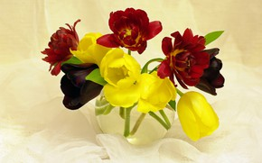 Picture flowers, mood, beauty, plants, spring, tulips, still life, a bunch, flora, bouquets, red, yellow