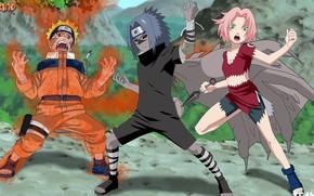Picture game, Naruto, anime, ninja, asian, manga, Uchiha Sasuke, shinobi, japanese, Haruno Sakura, Naruto Shippuden, Uzumaki …