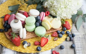 Picture flowers, berries, blueberries, strawberry, sweet, macaroon