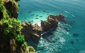 Picture sea, rocks, shore, vegetation, Beautiful Turquoise