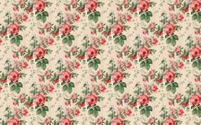 Picture retro, texture, roses, background, Wallpaper, vintage
