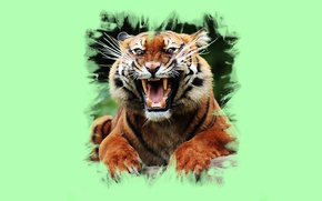 Picture tiger, art, mouth, fangs