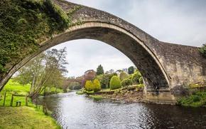 Picture trees, bridge, river, Scotland, Ayrshire, Brig o' Doon