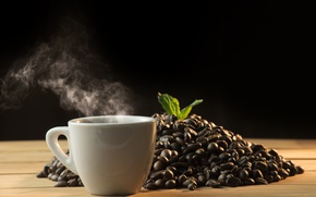 Picture leaves, coffee, grain, Cup, hot, cup, beans, coffee