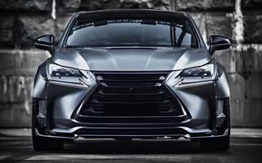 Picture Lexus, Gray, Face, Sight, Graphite