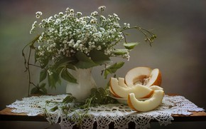 Picture flowers, still life, melon