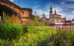Picture the city, Germany, Dresden, meadow, Dresden