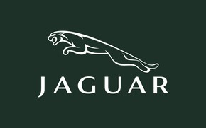 Picture the inscription, Jaguar, logo, Jaguar, green, fon