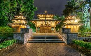 Picture temple, night, megapolis, Brisbane, Australia