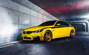 Picture BMW, Yellow, Gold, F82, Sight