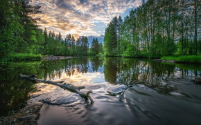 Picture water, clouds, trees, river