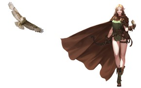 Picture bird, art, elf, cloak, Falcon, Elf, Daeho Cha