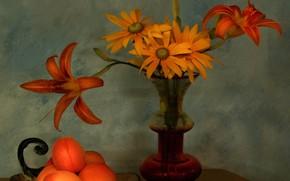 Picture bouquet, petals, vase, still life, apricots